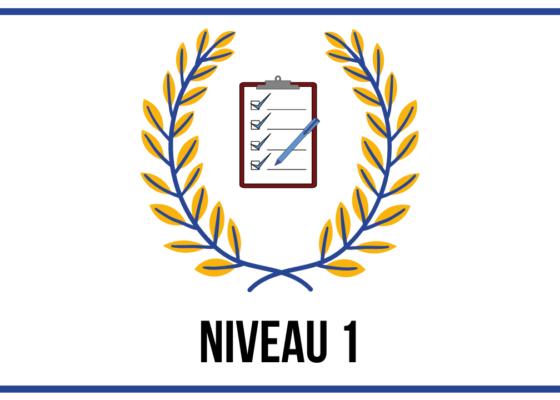 EXAMEN DE NIVEAU 1