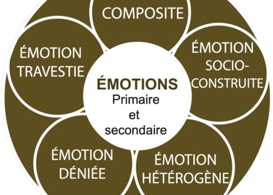 Le modèle kaléidoscopique des émotions